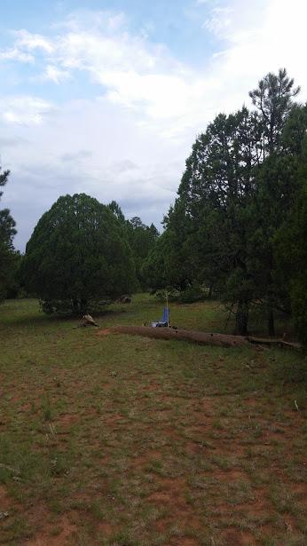 Pre-stumps