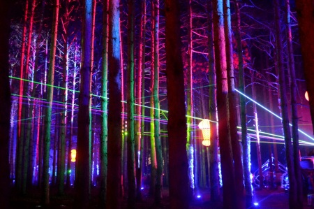 electric-forest4