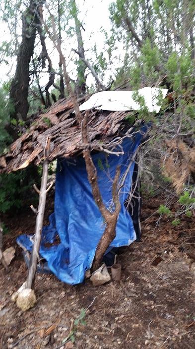 half-shack