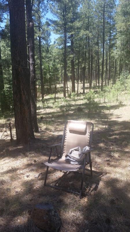 Writer's chair