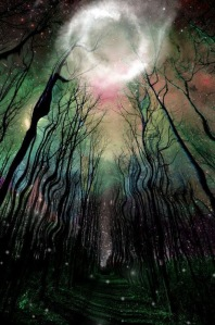 witch trees