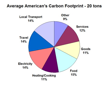 average-american-footprint