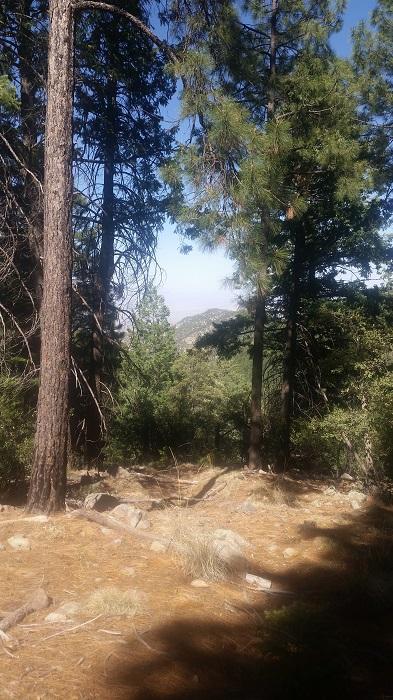 Mount Gram